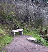 second bench